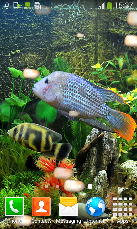 Aquarium Live Wallpapers Best Free App Download Android