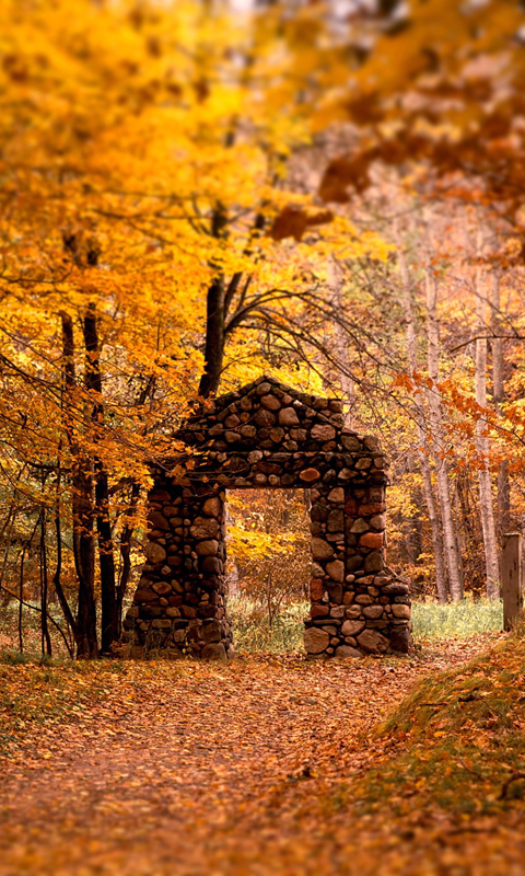 autumn wallpapers android app