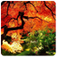 Download Autumn for Android Phone