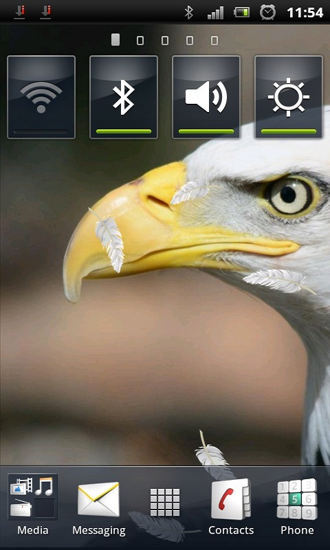 Download Bald Eagle Live Wallpaper free for your Android phone