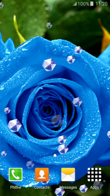Blue Rose Live Wallpapers screenshot 2