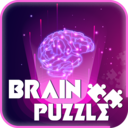 Image of Brain Puzzle