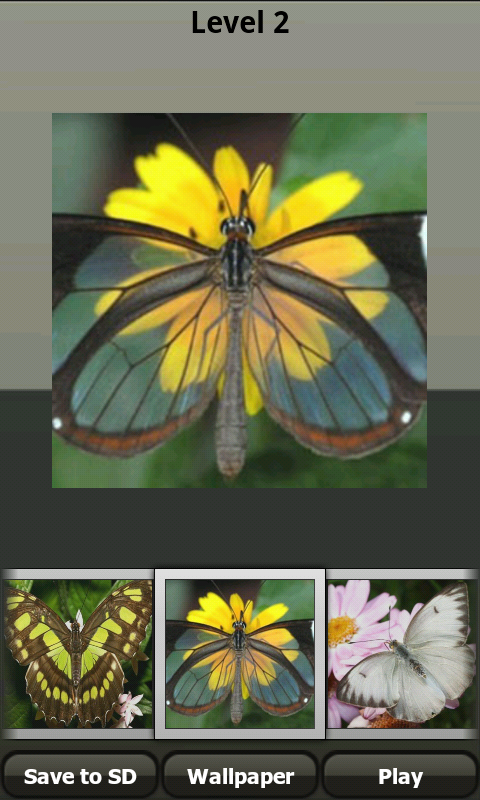Butterfly jigsaw puzzle game screenshot 2