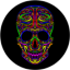 Download Colorful Skull Live Wallpaper for Android phone