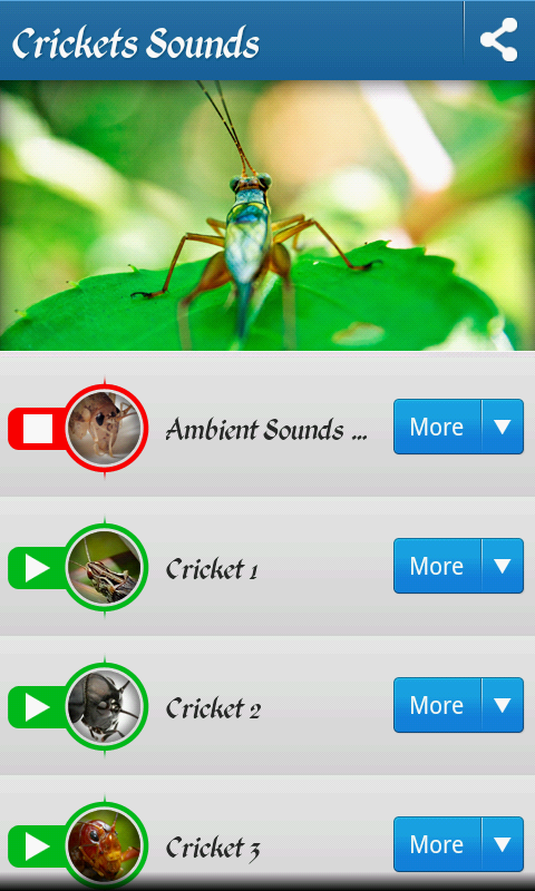 Cricket sounds free android app - Android Freeware