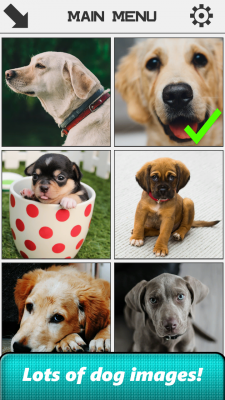 Dog Slide Puzzle screenshot 1