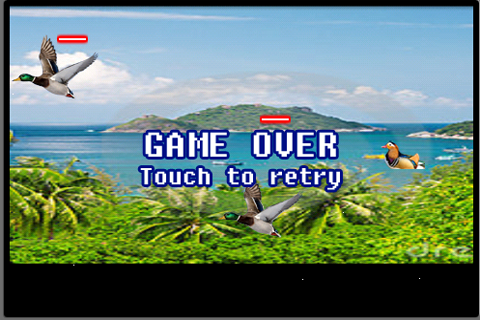 duck hunt download for wii