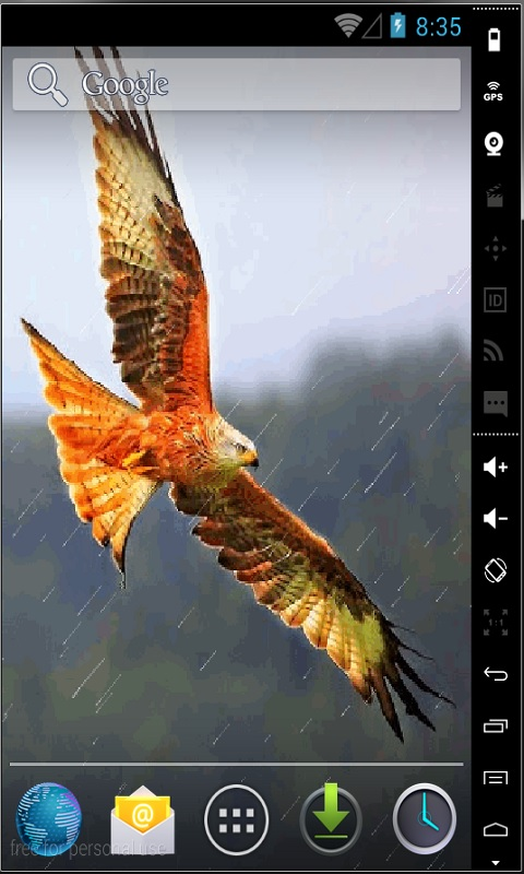 Download Eagle In Flight Live Wallpaper