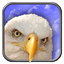Download Eagle Live Wallpaper for Android phone