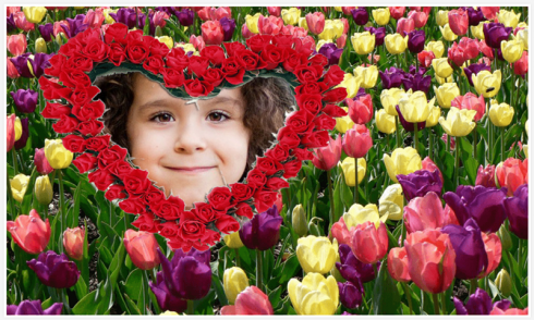 download flowers photo frames