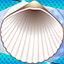 Download Free Seashells Photo Collage for Android phone