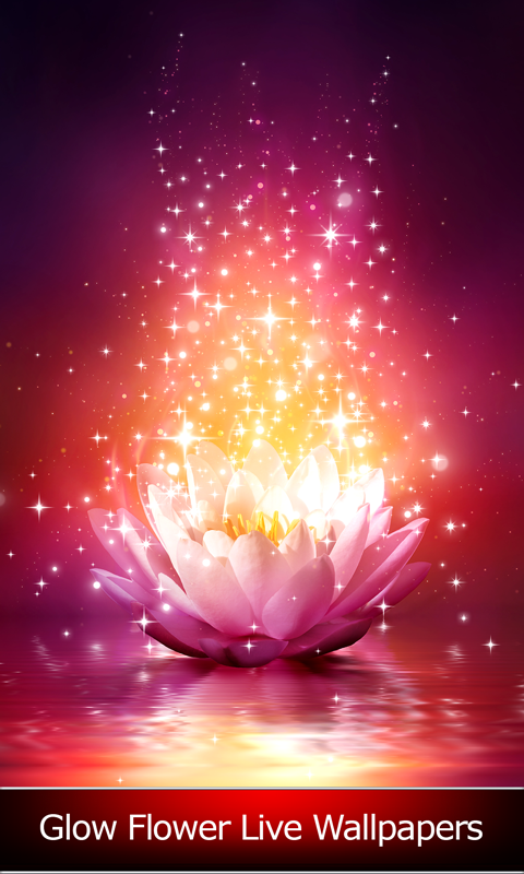 Glow Flower Live Wallpapers Free Android App Android Freeware