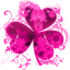 Image of GO Launcher Theme Pink Flowers