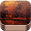 Download Golden Autumn Live Wallpaper for Android phone