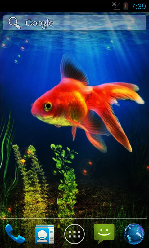 Goldfish Live Wallpaper Android App Free Apk By Andapplique