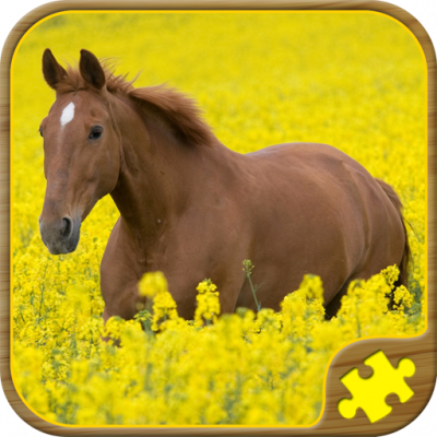 Image of Horse Puzzles Free