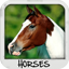 Download Horses Wallpapers for Android phone