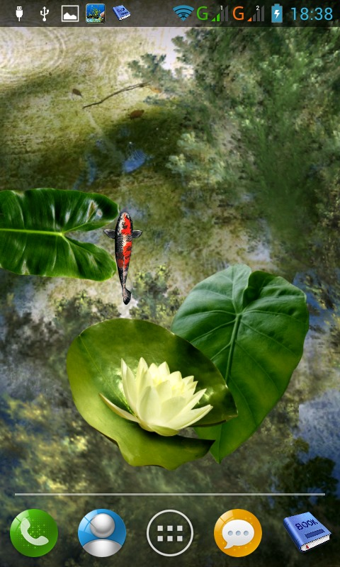 Download Koi pond free for your Android phone