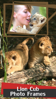 Lion Cub Photo Frames screenshot 1