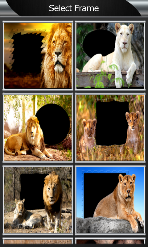 Lion Photo Frames screenshot 2