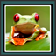 Live Wallpapers Frog