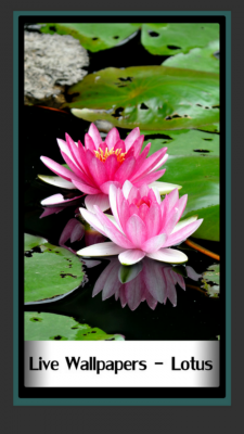 Live Wallpapers Lotus screenshot 1