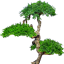 Download Lonely tree for Android phone