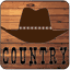 Download Online Country Radio APK app free