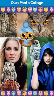 Owls Photo Collage screenshot 1