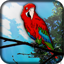 Download Parrot Live Wallpaper for Android phone