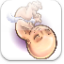 Download Pregnancy week by week for Android Phone