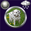 Download Puppy Clock Weather Widget APK app free
