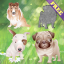 Download Puppy Dog Puzzles for Toddlers and Kids FREE for Android Phone