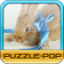 Download Puzzle Pop - Lovely Rabbit for Android Phone
