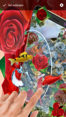 Red Roses Live Wallpaper Koi Fish screenshot 2