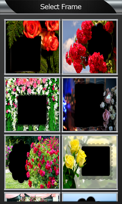 download rose flower photo frames