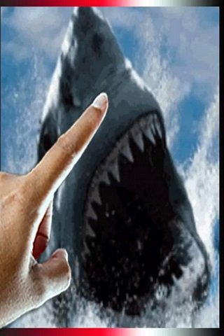 Shark Attack Live Wallpaper Free APK Android App
