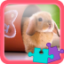 Download SlidePuzzle - Bunny Rabbit for Android Phone