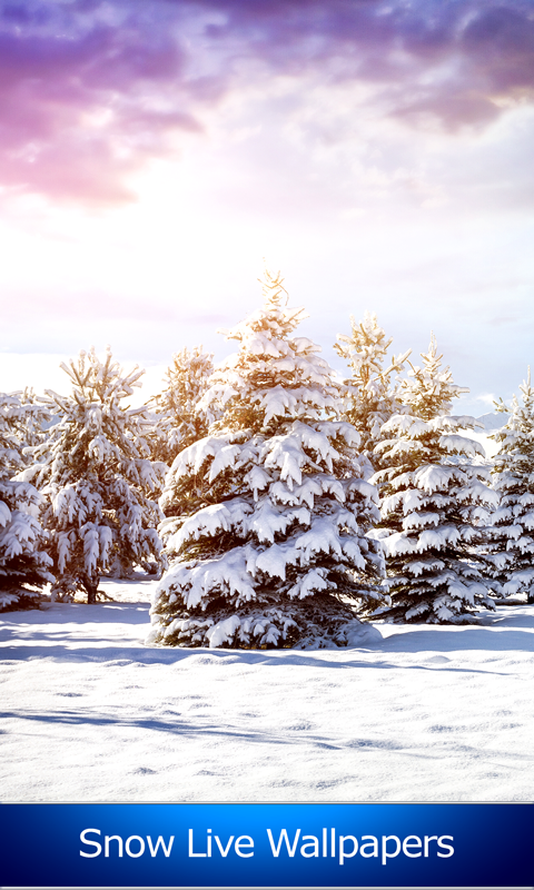 snow live wallpapers free app download android freeware