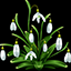 Download Snowdrops Photo Collage for Android phone