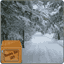 Download Snowfall Winter Road Live Wallpaper for Android Phone