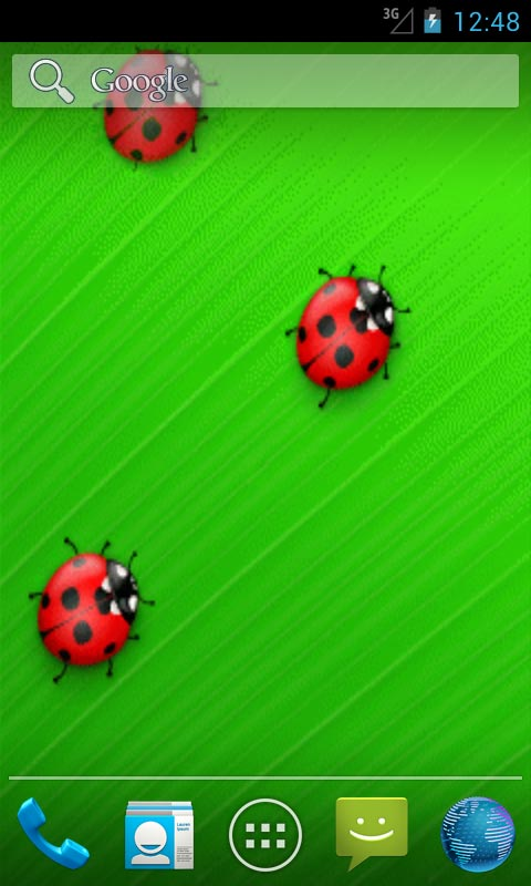 Download spring ladybird live wallpapers free for your android phone