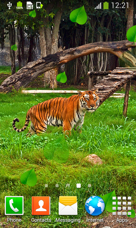 tiger live wallpapers best free apk android app android
