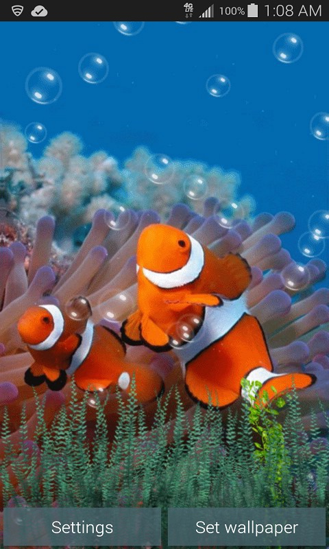 Underwater Clown Fish Live Wallpaper free android app ...