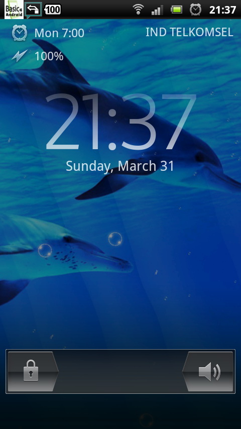 ... .net/download-underwater-swimming-dolphin-live-wallpaper.html