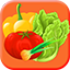 Vegetable Stickers Free