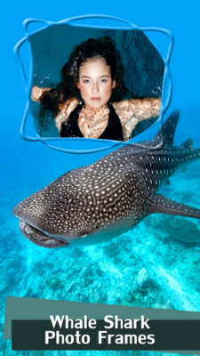 Whale Shark Photo Frames screenshot 1