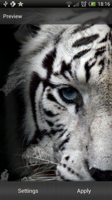 White Tiger Live Wallpaper Android APK
