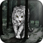 Download White Tiger Live Wallpaper for Android Phone