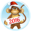 Download Year of the Monkey Free LWP for Android phone